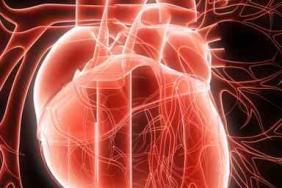 Les valvulopathies dans la vraie vie | Cardiologie Pratique