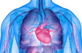 Hypertension pulmonaire : mise au point après les..